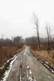 χιονώδης χειμώνας τοπίων Στοκ φωτογραφία με δικαίωμα ελεύθερης χρήσης