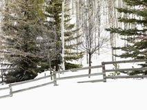 χιονώδης χειμώνας τοπίων Στοκ Εικόνες