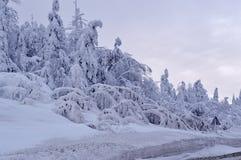 Χιονώδης χειμώνας του 2018 Στοκ Φωτογραφίες