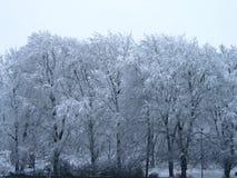 χιονώδης Στοκ εικόνες με δικαίωμα ελεύθερης χρήσης