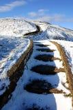 χιονώδη βήματα Στοκ εικόνα με δικαίωμα ελεύθερης χρήσης