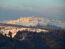 Χιονώδη βουνά με τα πράσινα δάση Στοκ εικόνα με δικαίωμα ελεύθερης χρήσης