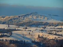 Χιονώδη βουνά με τα πράσινα δάση Στοκ Εικόνα