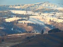 Χιονώδη βουνά με τα πράσινα δάση Στοκ Φωτογραφίες