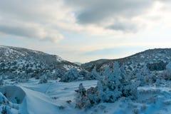 Χιονώδη δέντρα, βουνά και σύννεφα στοκ φωτογραφίες με δικαίωμα ελεύθερης χρήσης