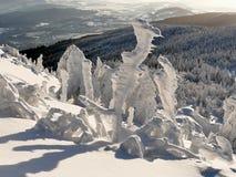Χιονώδη δέντρα ενός χειμερινού βουνού στοκ εικόνες