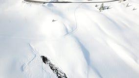 Χιονώδη δέντρα και δάση στα ελβετικά βουνά Jura φιλμ μικρού μήκους