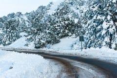 Χιονώδη δέντρα και παγωμένος δρόμος στοκ εικόνες με δικαίωμα ελεύθερης χρήσης
