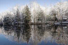 Χιονώδεις αντανακλάσεις χειμερινών δέντρων Στοκ Εικόνες