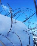 Χιονώδεις εγκαταστάσεις Στοκ Φωτογραφία