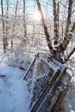 Χιονώδεις πύλες στοκ φωτογραφίες
