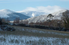 Χιονώδεις λόφοι, Wicklow, Ιρλανδία Στοκ Φωτογραφία