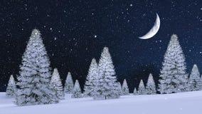 Χιονώδες δάσος έλατου στη χειμερινή νύχτα χιονοπτώσεων 4K ελεύθερη απεικόνιση δικαιώματος