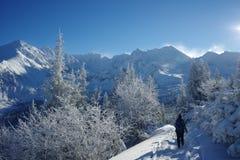 χιονώδες ίχνος Στοκ Εικόνες