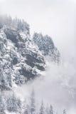 Χιονώδες απότομο βουνό με τα υψηλά δέντρα στοκ φωτογραφία με δικαίωμα ελεύθερης χρήσης