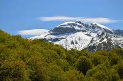Χιονώδες βουνό ενάντια στο δάσος άνοιξη στα Πυρηναία Στοκ φωτογραφία με δικαίωμα ελεύθερης χρήσης
