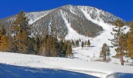 Χιονώδες βουνό με τα ίχνη σκι Στοκ φωτογραφία με δικαίωμα ελεύθερης χρήσης