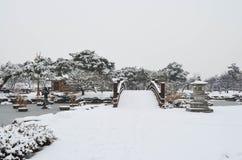 Χιονώδες πάρκο Στοκ Φωτογραφία