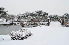 Χιονώδες πάρκο Στοκ φωτογραφίες με δικαίωμα ελεύθερης χρήσης