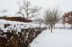 Χιονώδες πάρκο Στοκ εικόνες με δικαίωμα ελεύθερης χρήσης