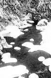 Χιονώδες ρεύμα Στοκ φωτογραφία με δικαίωμα ελεύθερης χρήσης