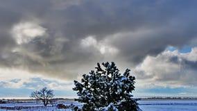 Χιονώδες τοπίο χρονικού σφάλματος φιλμ μικρού μήκους