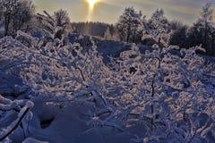 Χιονώδες τοπίο Στοκ Εικόνες