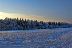 Χιονώδες τοπίο Στοκ εικόνα με δικαίωμα ελεύθερης χρήσης