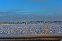 Χιονώδες τοπίο Στοκ φωτογραφία με δικαίωμα ελεύθερης χρήσης