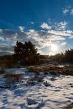 Χιονώδες χειμερινό τοπίο Ηλιοβασίλεμα στο δάσος Στοκ φωτογραφία με δικαίωμα ελεύθερης χρήσης