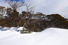 Χιονώδες χειμερινό τοπίο Στοκ εικόνα με δικαίωμα ελεύθερης χρήσης
