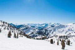 Χιονώδες Riges πίσω από την κρυμμένη αιχμή Στοκ Εικόνες