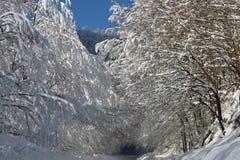 Χιονώδες road2 Στοκ Εικόνα