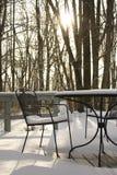 Χιονώδης έδρα γεφυρών Στοκ Φωτογραφίες