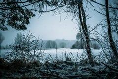 Χιονώδης ήρεμη άποψη Στοκ Εικόνες
