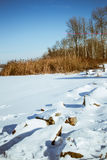 Χιονώδης ακτή ποταμών με τους λίθους πετρών - χειμερινό τοπίο Στοκ Φωτογραφίες