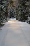 Χιονώδης δασικός δρόμος Στοκ Φωτογραφίες