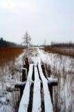 Χιονώδης γέφυρα για πεζούς πλησίον στη λίμνη τον Ιανουάριο Στοκ εικόνα με δικαίωμα ελεύθερης χρήσης