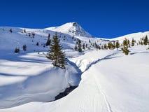 Χιονώδης επιλογή βουνών στοκ φωτογραφία