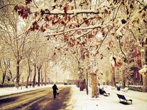 χιονώδης ημέρα Στοκ εικόνες με δικαίωμα ελεύθερης χρήσης