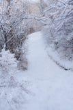 Χιονώδης διάβαση 3 Στοκ φωτογραφία με δικαίωμα ελεύθερης χρήσης