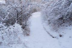 Χιονώδης διάβαση 2 Στοκ εικόνες με δικαίωμα ελεύθερης χρήσης