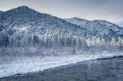 Χιονώδης κολπίσκος Στοκ φωτογραφία με δικαίωμα ελεύθερης χρήσης