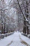 Χιονώδης οδός πόλεων, κάθετη Στοκ Εικόνες