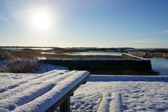 Χιονώδης πάγκος Στοκ φωτογραφίες με δικαίωμα ελεύθερης χρήσης