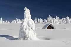 Χιονώδης πεδιάδα με μια αποκλεισμένη από τα χιόνια καλύβα Στοκ Φωτογραφίες