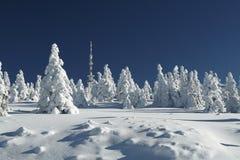 Χιονώδης πεδιάδα Στοκ Εικόνα