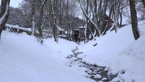 Χιονώδης ροή του νερού κολπίσκου στο κανάλι χειμερινών πάρκων Πτώση χιονιού Ζουμ έξω 4K φιλμ μικρού μήκους