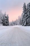 Χιονώδης δρόμος βουνών Στοκ εικόνες με δικαίωμα ελεύθερης χρήσης