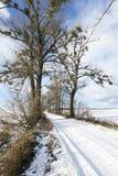 Χιονώδης δρόμος, χειμώνας στοκ εικόνες